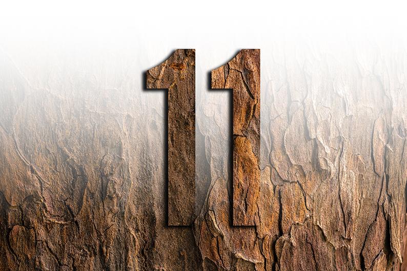significato del numero 11 undici