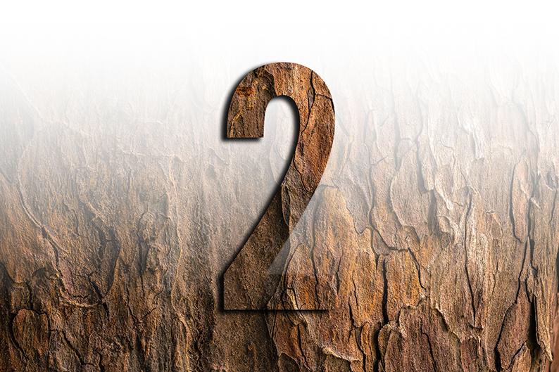 significato del numero 2 due