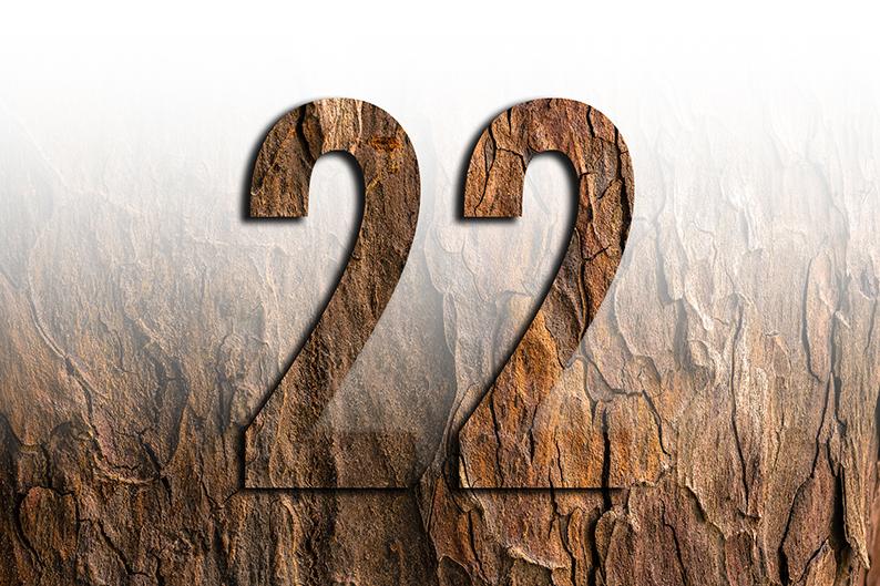 significato del numero 22 ventidue
