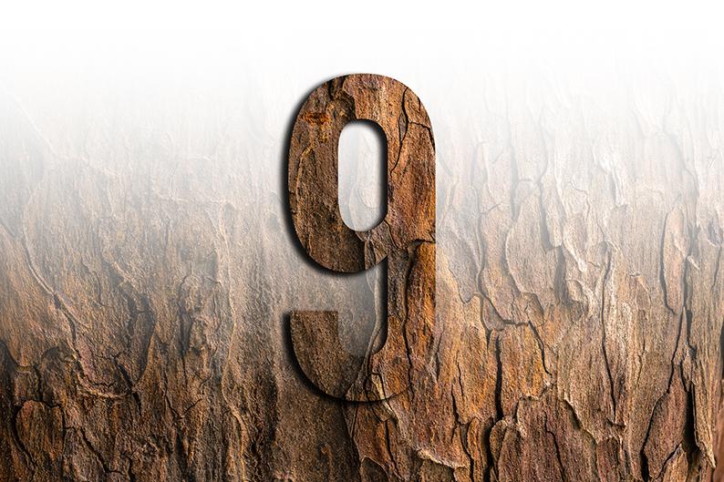 significato del numero 9 nove