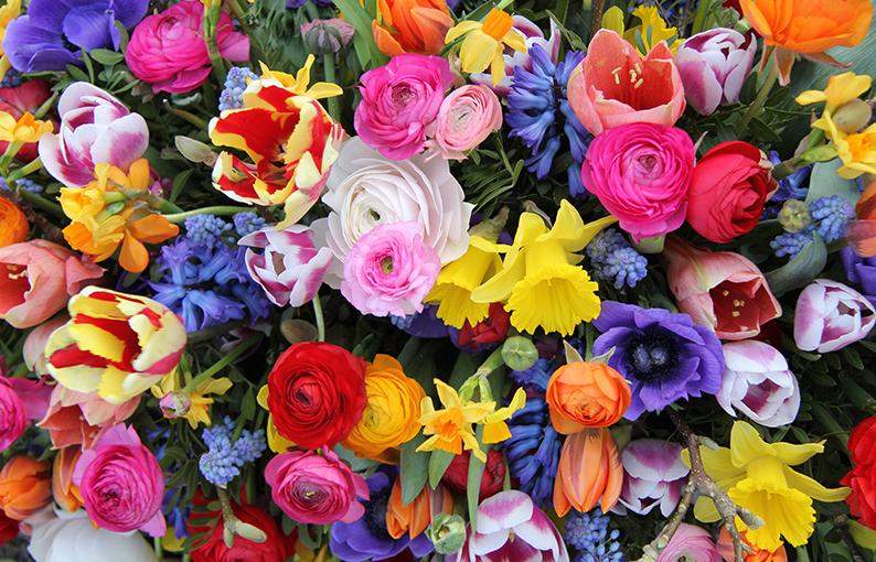 fiori per la festa della mamma