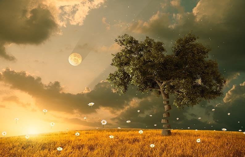 significato dei sogni di freud