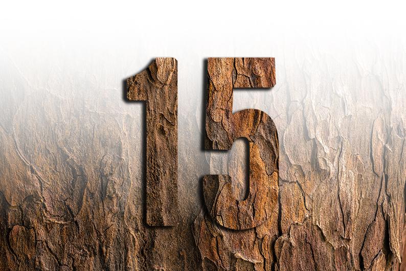 significato del numero 15 quindici