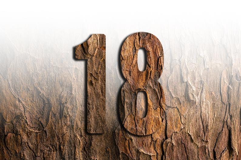 significato del numero 18 diciotto
