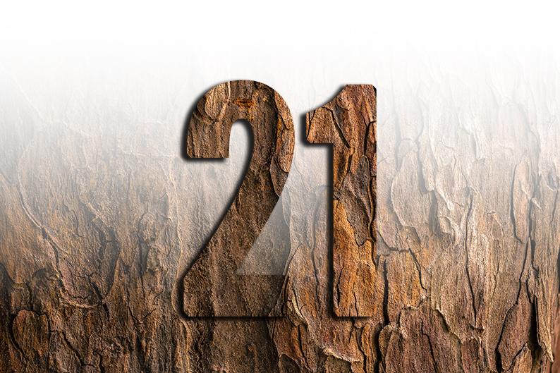 significato del numero 21 ventuno